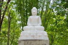 Free White Buddha Statue Royalty Free Stock Photography - 32409427