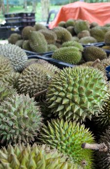 Free Baskets Of Durians Stock Image - 32434461