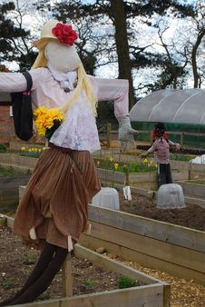 Free Scarecrows Royalty Free Stock Photos - 32441898