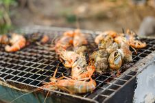 Free Sea Food Grill Royalty Free Stock Photo - 32451555