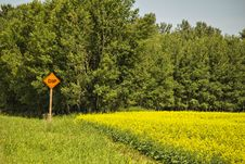 Free A Warning Sign Of A Dip In The Road. Royalty Free Stock Photo - 32452215