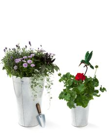 Free Garden Flowers With Shovel And Decorative Bird Stock Photography - 32453452