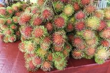 Free Rambutan Or Hairy Fruit Stock Photo - 32454700