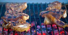 Free Grill Pork Royalty Free Stock Photo - 32465025
