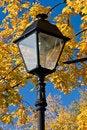 Free Autumn Lantern Stock Images - 3250754