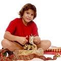 Free Christmas Wrapper Royalty Free Stock Photos - 3252878