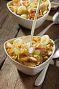 Free Corn Flakes With Fruits Royalty Free Stock Image - 3253746
