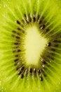 Free Fresh Kiwi Texture Royalty Free Stock Images - 3259349