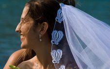 Free Happy Bride Royalty Free Stock Photo - 3250545
