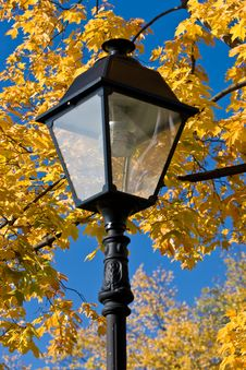 Free Autumn Lantern Stock Images - 3250754