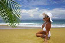 Free Vacation Royalty Free Stock Photo - 3254965