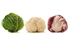 Free Cabbages Royalty Free Stock Image - 3257396