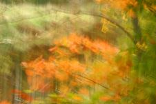 Free Autumn Abstract Royalty Free Stock Image - 3257646