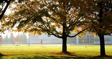 Free Autumn Day Stock Image - 3259061