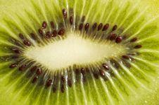 Free Fresh Kiwi Texture Royalty Free Stock Photo - 3259345
