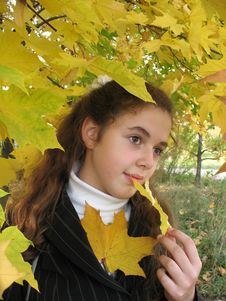 Free The Young Girl In An Autumn Royalty Free Stock Photo - 3259665