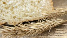 Free Bread And Wheat Ears Royalty Free Stock Photos - 32505718