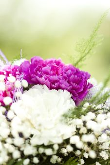 Free Close Up On Colorful Wedding Bouquet Stock Photos - 32547193