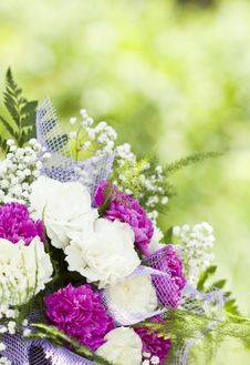 Free Close Up On Colorful Wedding Bouquet Royalty Free Stock Image - 32547196