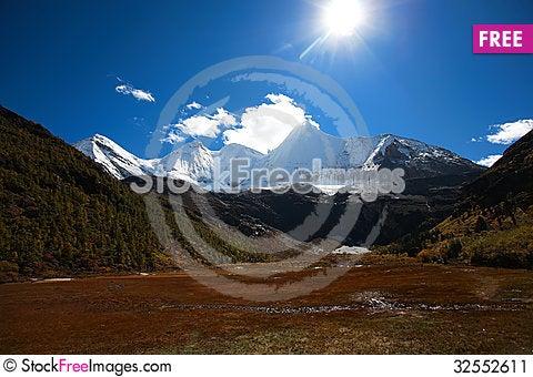 Free Snow Sun And Grass Stock Image - 32552611