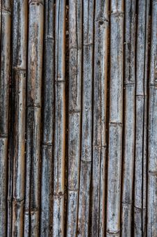 Free Old Bamboo Fence Stock Image - 32561601