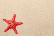 Red Starfish On A Sand Background. Stock Images