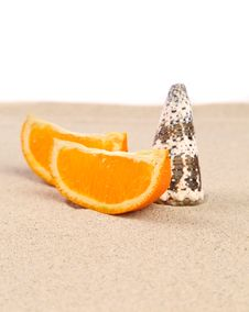 Free Orange And Shell On Sand. Stock Images - 32571754