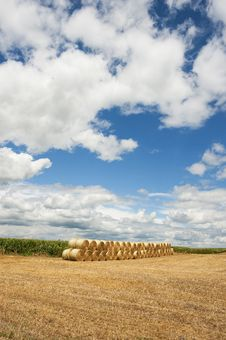 Rolls Of Hay Bales In Field. Royalty Free Stock Photography