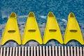 Free Four Yellow Flippers Stock Photos - 3269433