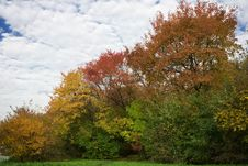 Free Colors Of The Fall Royalty Free Stock Image - 3261276