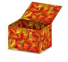 Free Autumn Leaves Box Stock Photos - 3263133