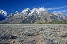 Free Grand Teton After First Snow Royalty Free Stock Photos - 3263378