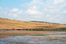 Free Inner Mongolia Stock Photos - 3264823