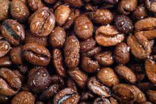Free Coffee Beans Stock Photos - 3265293