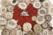 Free Christmas Bow And Flower Royalty Free Stock Image - 3265516