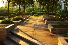 Free Sunrise In Shenzhen Royalty Free Stock Image - 3266616