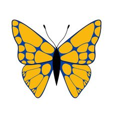 Free Orange & Blue Butterfly Stock Images - 3267084