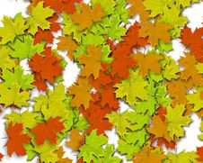 Free Autum Background Royalty Free Stock Photo - 3267215