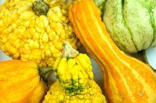 Free Pumpkins Stock Image - 3268401