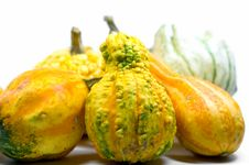 Free Mini Pumpkins Stock Images - 3268404