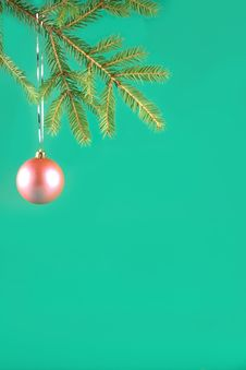 Free Pink Ball On A Fur-tree Royalty Free Stock Photos - 3269118