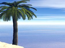 Free Beautiful Landscape Stock Photography - 3269192