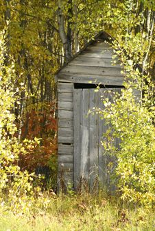 Free Outhouse In Bush 2 Royalty Free Stock Images - 3269519