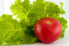 Free Tomato And Lettuce Salad Royalty Free Stock Images - 3269969