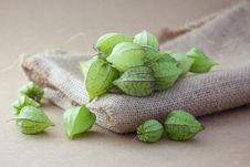 Free Ground Cherry Stock Photo - 32644480