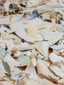 Paper Waste For Recycle Royalty Free Stock Photo