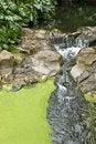 Free Stream Royalty Free Stock Photography - 3276397