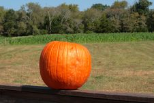 Free Lone Pumpkin Royalty Free Stock Photos - 3270428