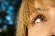 Free Blond Girl S Eye Closeup Stock Photo - 3277060