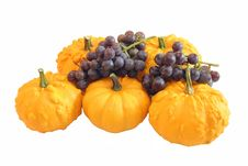 Free Ornamental Squash And Grapes Royalty Free Stock Photos - 3278758